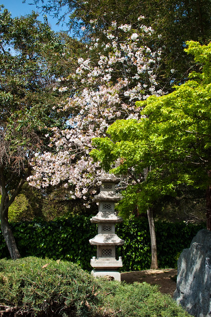 4526446397 149a6556fc for Japanese friendship garden