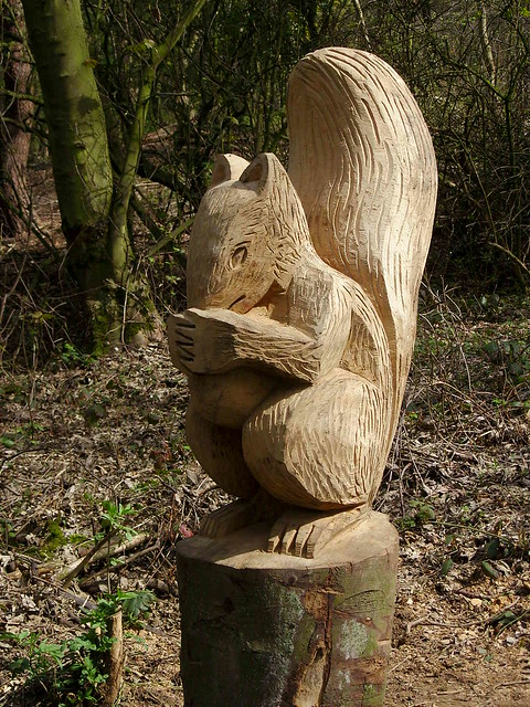 Squirrel carving flickr photo sharing