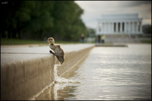 The Lincoln Memorial - The Decisive Moment in Photography