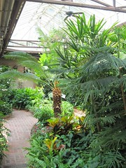 Elsong Gardens Conservatory