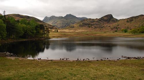 Lake District 2010_D13552