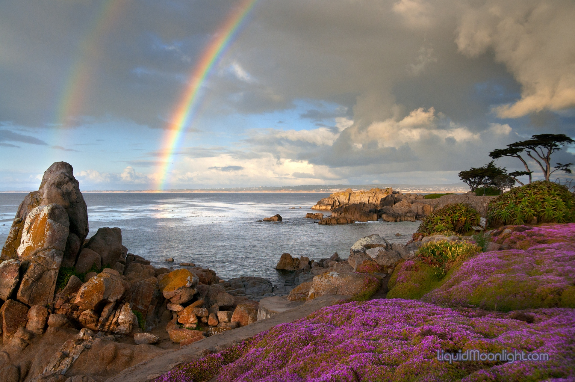 pacific grove We warmly welcome you to pacific grove,  take a look at some of our upcoming events below, and join us for an unforgettable time aspire community connections.
