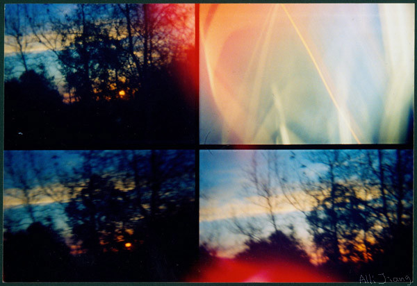 lomo action sampler.