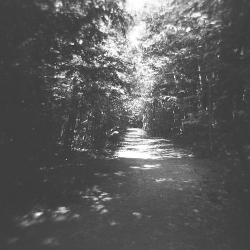 park county blue trees light summer blackandwhite bw white black 120 film nature analog forest square point landscape grey nc holga woods jay view path echo gray scenic northcarolina raleigh trail duotone meander curve prompt chrysti sooc bluejaypointcountypark christyhydeck