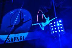 Circus-Safari 19.6.2010