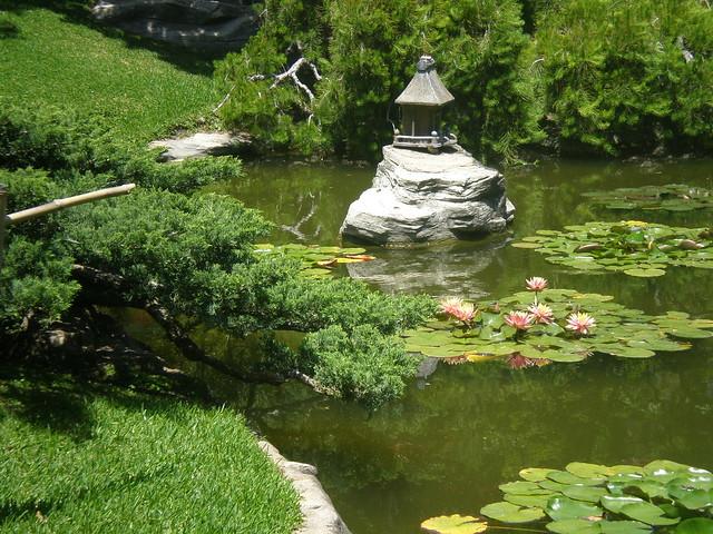 Huntington gardens zen pond flickr photo sharing for Zen garden pond