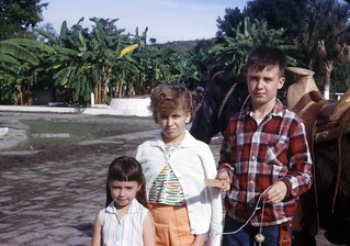 sibs in Mexico