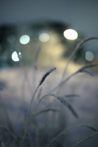 winter friends 2 lake snow ice night 1025fav canon suomi finland eos frozen flickr frost mark 14 sigma 100v10f ii mk2 5d 50 lumi talvi jyväskylä 2010 mkii markii yö tero järvi jää mark2 jyväsjärvi jäätynyt maaniemi kuura mywinners flickraward flickraward5