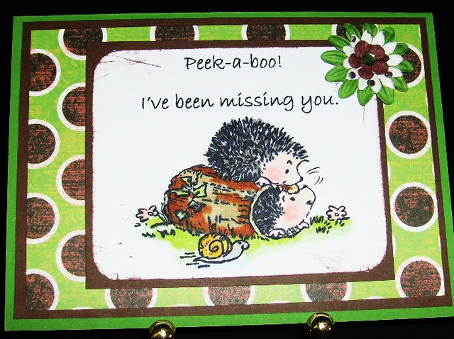 Peek A Boo, I've Been Missing You!