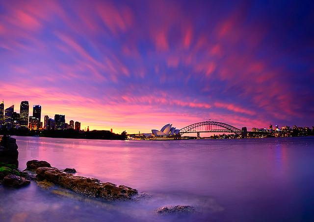 Pink Sydney Harbour