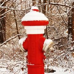 H = hydrant