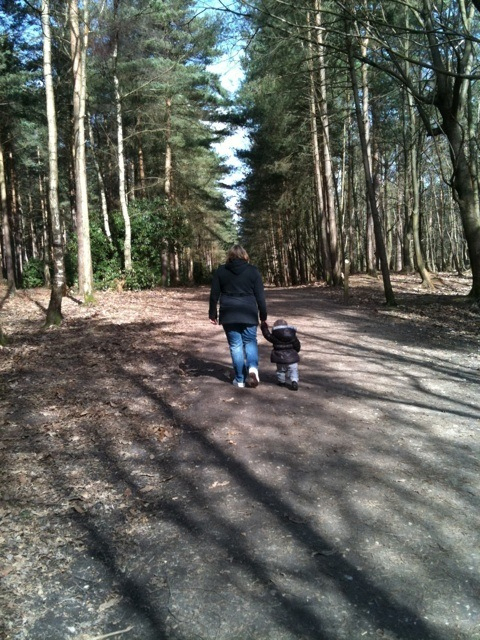 Walking in the forest in bracknell
