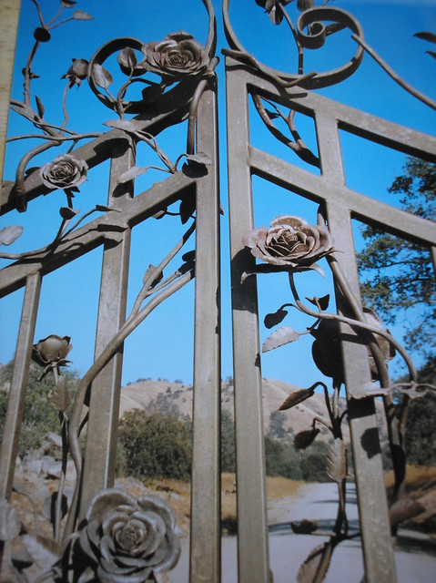 Wrought Iron Roses Quot Every Rose Has It S Thorn Quot By