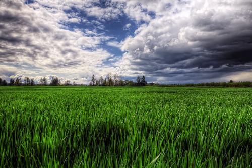 [フリー画像素材] 自然風景, 田園・農場, 風景 - アメリカ合衆国, HDR ID:201203150600
