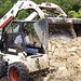 People at Work: Bobcat
