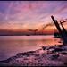 "Purple Sunset.. by M. Al-Dhafeeri ""Pirate"""