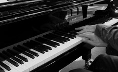 keyboard player, musician, pianist, piano, musical keyboard, keyboard, jazz pianist, monochrome photography, music workstation, electric piano, digital piano, monochrome, black-and-white, black, player piano,