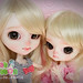 Pullip and dal crying