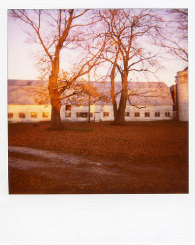 autumn trees light sunset polaroid vermont farm barns roidweek