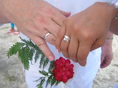 Matrimonios y lunas de miel