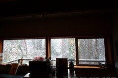 falling snow viewed from the dining room    MG 2919