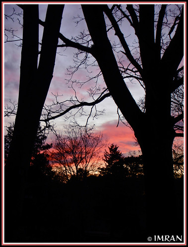 2009 clouds dusk eastpatchogue fall imran imrananwar landscapes longisland nature newyork night nikon outdoors patchogue peaceful red s6 seasons sky stilllife suffolk sunset tranquility trees yellow