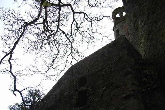 Blarney castle, Ireland, Jan 2007