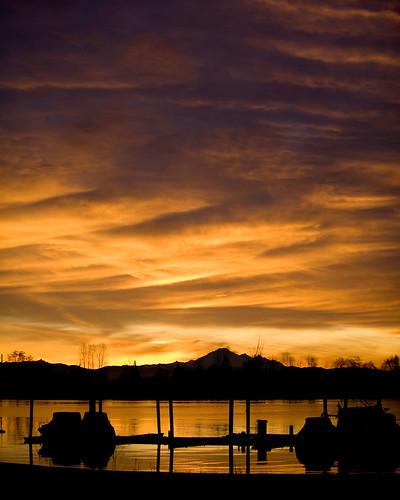 sunset silhouette yellow sunrise washington bc wa fraserriver mtbaker portcoquitlam
