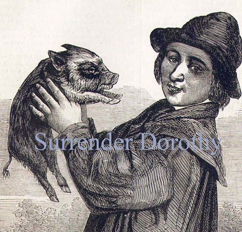 Pet Pig 1879 Victorian Illustration