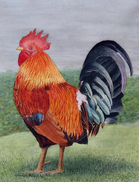 Another Rooster painting