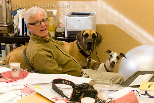 Dog Friendly Workplace - My Boss and his Pups