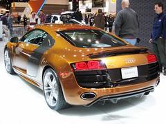 Chicago Auto Show 2010 (48)