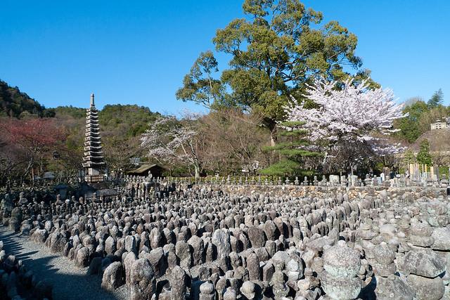 Thousands of Little Buddhas