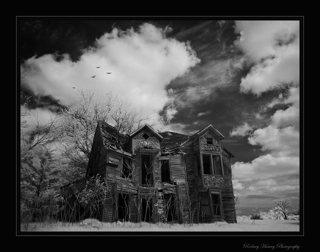 Monster House, Fujifilm IS-1