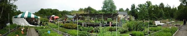 Panorama: Catskill Native Nursery