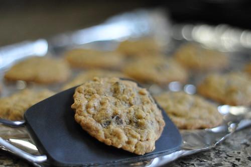 spatula cookie
