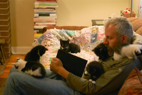 Kitten magnet Craig