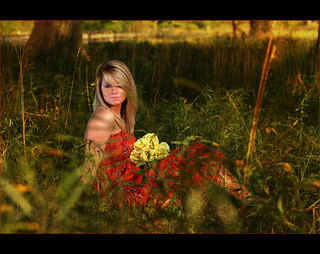Erica ~ Senior in the golden fields