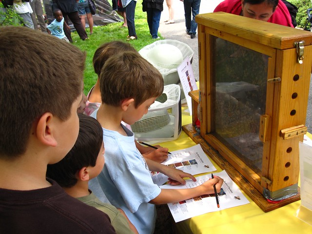 Using the Beehive Checklist young visitors study a hive. Photo by Rebecca Bullene.