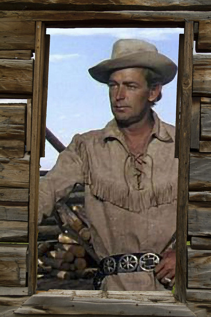 Image Result For Alan Ladd Western