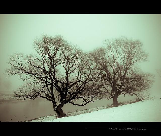 The last winter image - I hope ツ