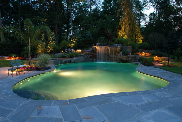 Free form swimming pool free form swimming pool with for Pool design certification