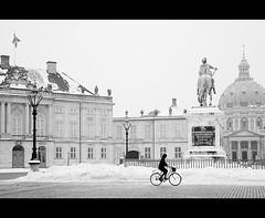 Frozen and b/w København