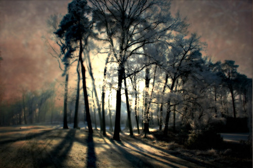 Winter landscape texturized-2
