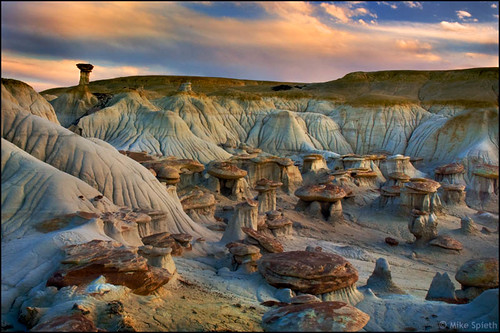 A Flock of Hoodoos