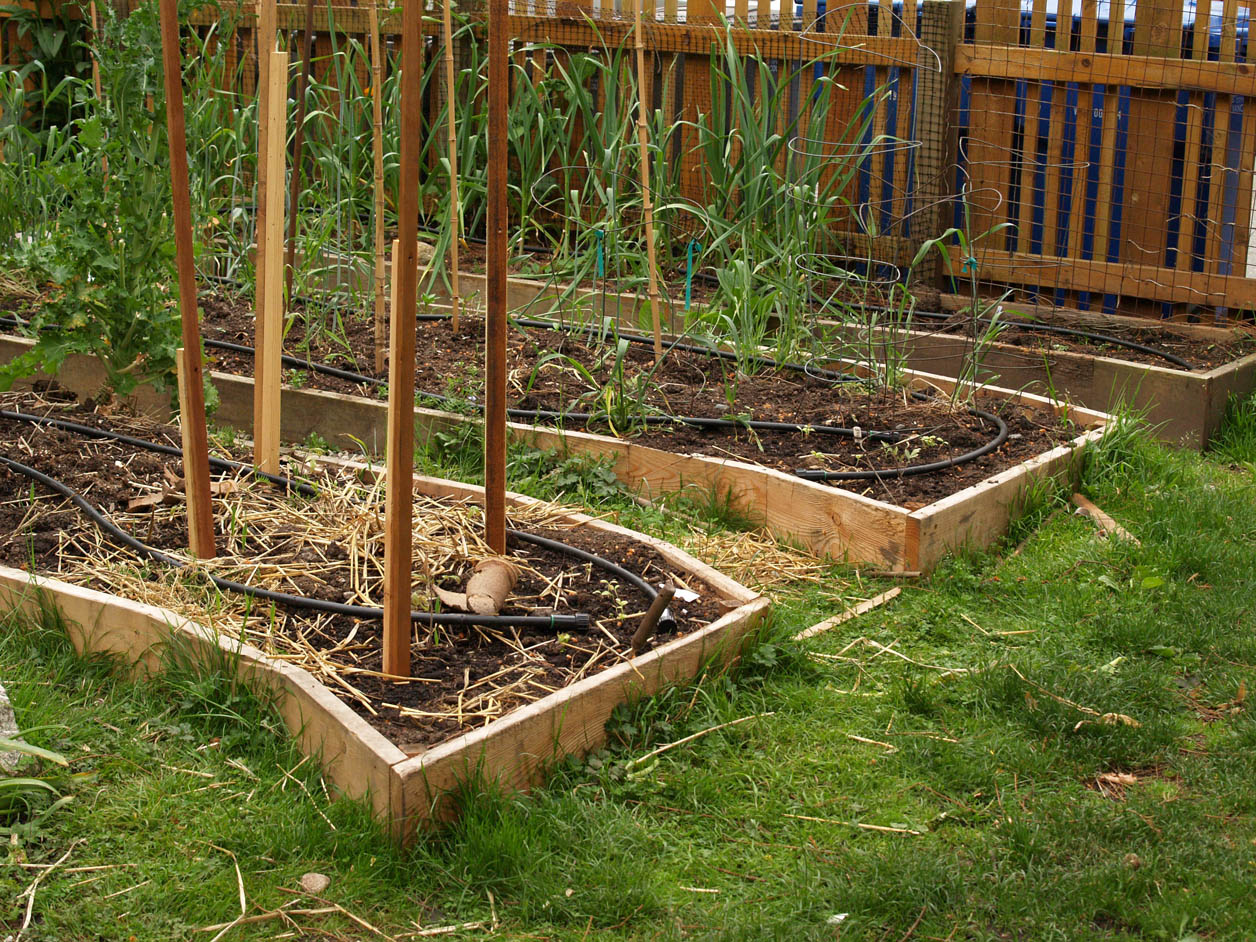 Curved Raised Garden Bed Garden Ftempo