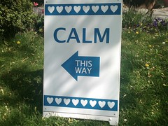 Calm: This Way