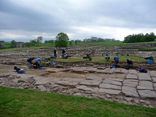 Excavations in Process, Vindolanda