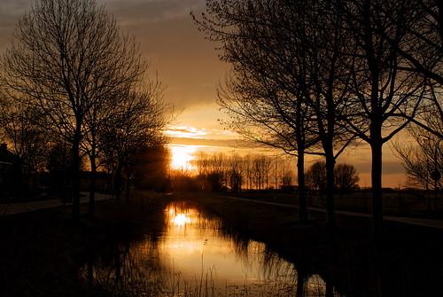 trees sunset sky orange sun color reflection tree water yellow night landscape evening pond zonsondergang bomen day sony boom beam avond dag geel cpf dei wetter leeuwarden vijver weerspiegeling kleur giel a300 liwwadden ljouwert sonyalpha α300 alpha300 beammen sonyphotographing jûn