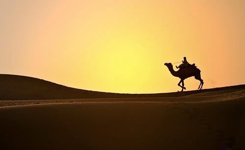 sunset india nature silhouette landscapes sand tramonto desert dunes dune natura pace paesaggi thar rajasthan deserto sabbia cammello silenzio mat56 bestcapturesaoi elitegalleryaoi mygearandmepremium mygearandmebronze mygearandmesilver mygearandmegold mygearandmeplatinum mygearandmediamond 4timesasnice